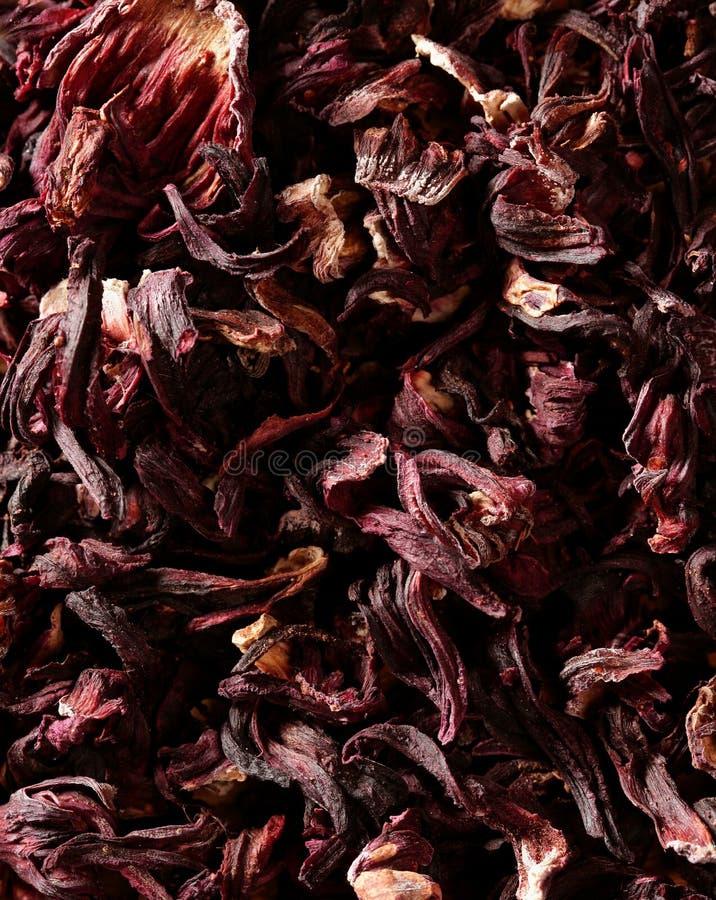 Hibiscus trocknete Blumenblätter, Jamaika-Blumen, Tee stockfotografie