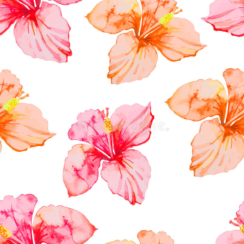 Hibiscus. Tropical plants seamless pattern. Exotic flower. Watercolor. stock illustration