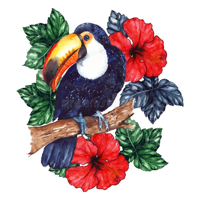 Hibiscus van de de toekanbloem van de waterverf de exotische tropische dierlijke vogel stock illustratie