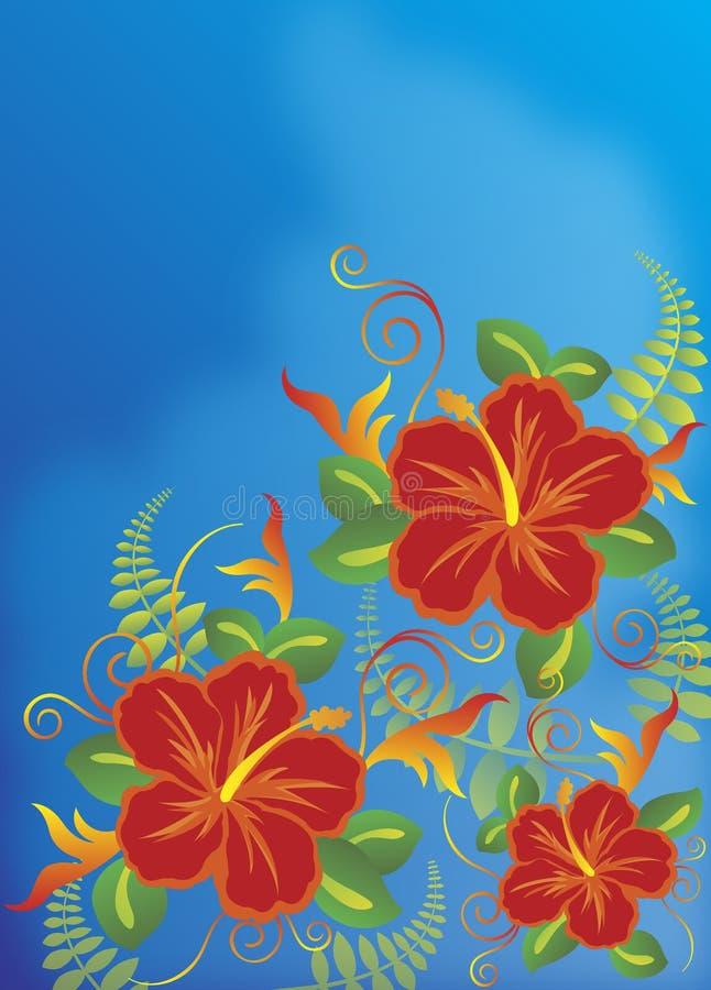 Hibiscus vermelho ilustração royalty free
