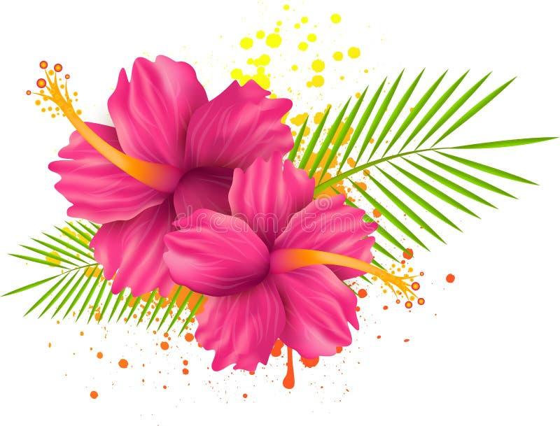 Hibiscusblumen auf Schmutzhintergrund lizenzfreie abbildung