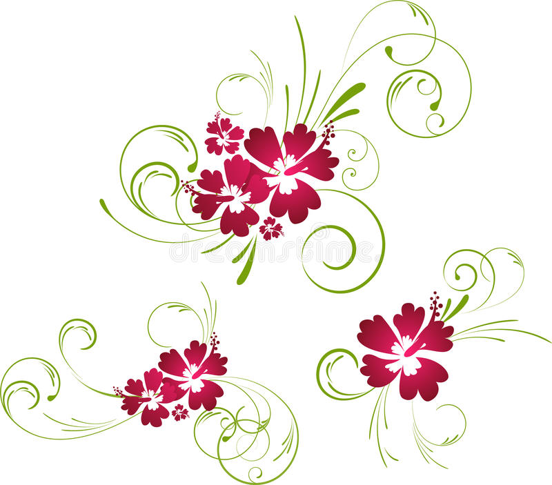 Hibiscusblumenelemente stock abbildung