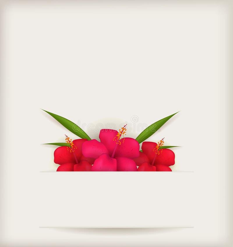 Hibiscusblumenhintergrund stock abbildung