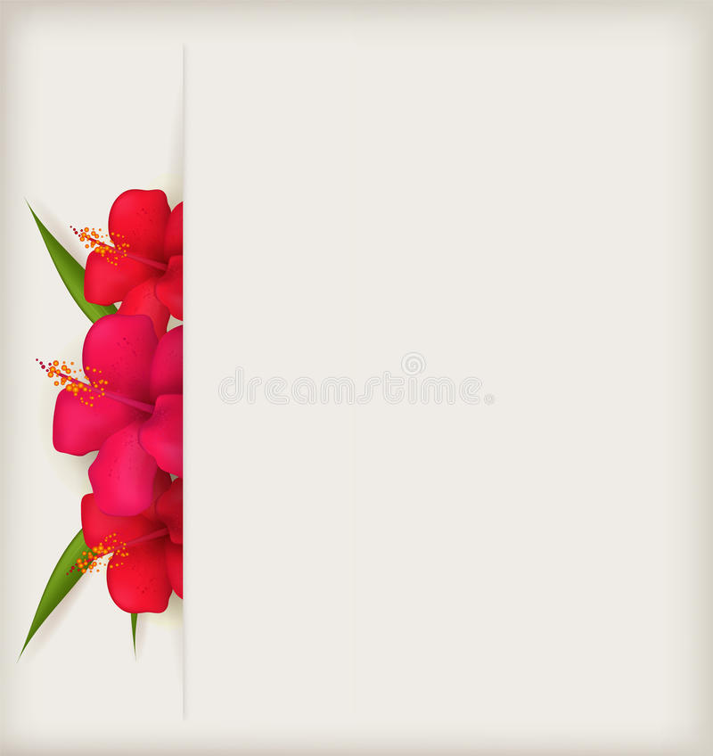 Hibiscusblumenhintergrund vektor abbildung