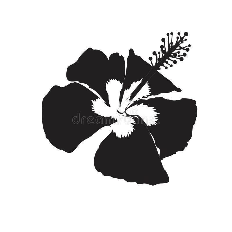 Hibiscusblumenillustration für zeichnendes Logosymbolschattenbild lizenzfreie abbildung