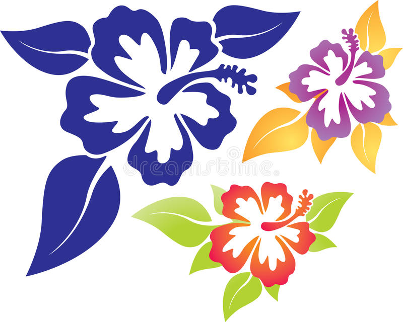 hibiskus royaltyfri illustrationer