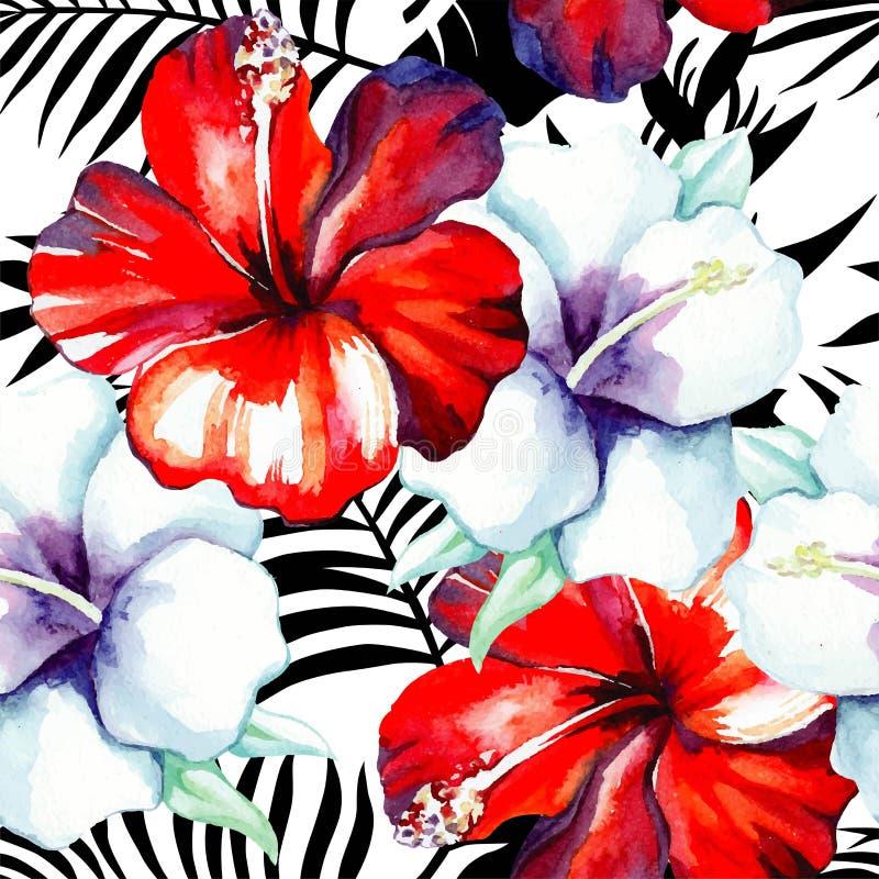 Hibiskusvattenfärgmodell, svartvita tropiska sidor stock illustrationer