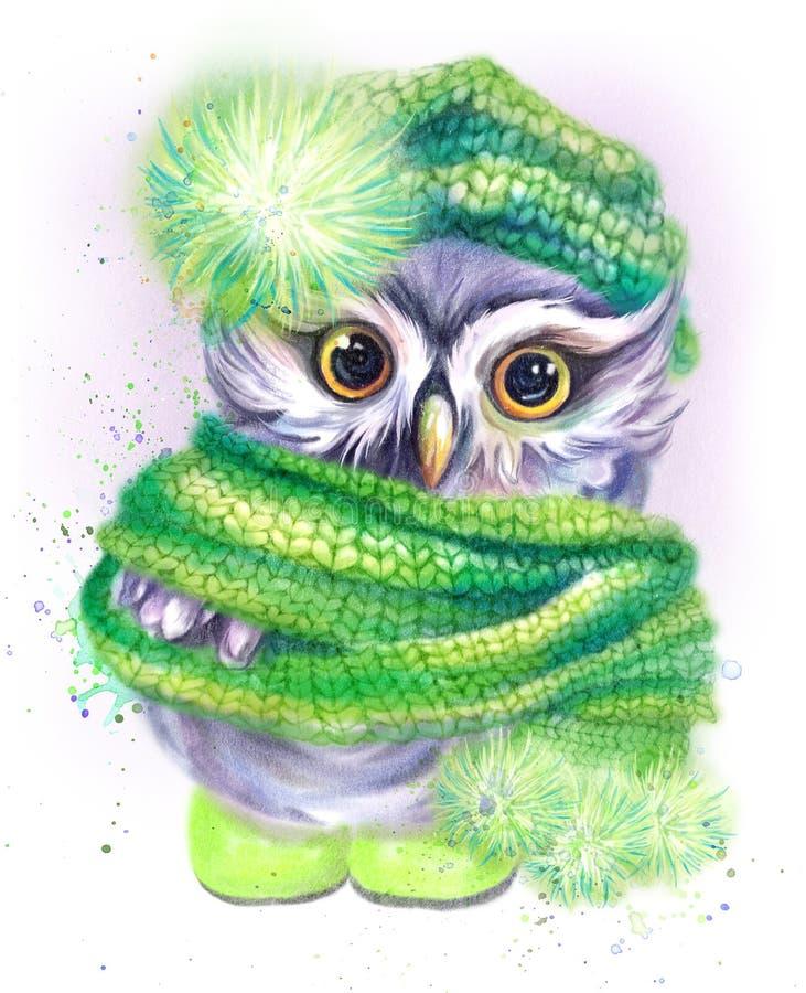 Hibou dans un chapeau et une écharpe verts image libre de droits