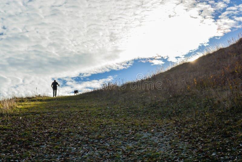 Hicker и собака идя к верхней части горы стоковое фото