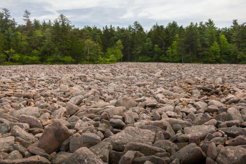 Hickory Run State Park Boulder Field, Lake Harmony, Pensilvânia, Estados Unidos da América imagem de stock