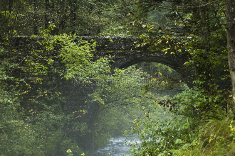 Hidden bridge royalty free stock photos