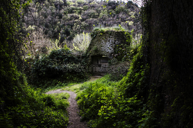 The Hidden Cabin royalty free stock images