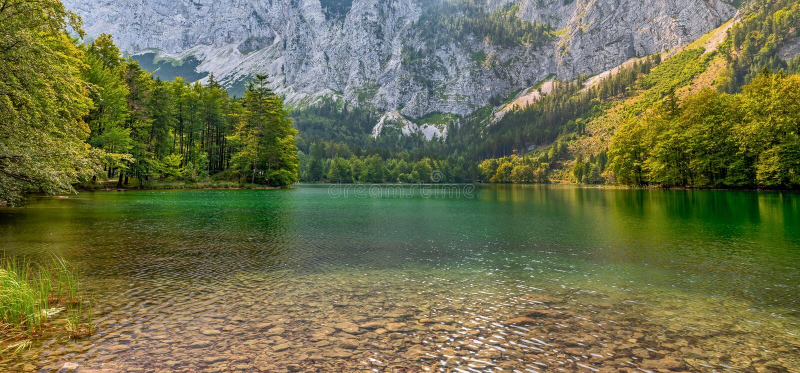 Hidden Green Lake Austria Mountains royalty free stock image