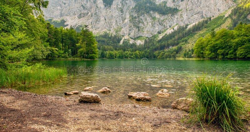 Hidden Green Lake Austria Mountains stock photography