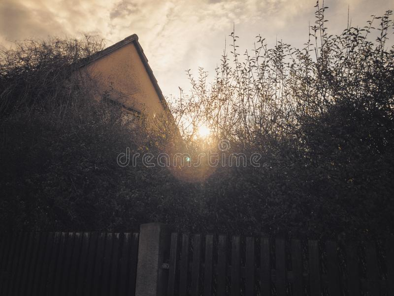 Hidden house and the rising sun. Behind the trees royalty free stock photography