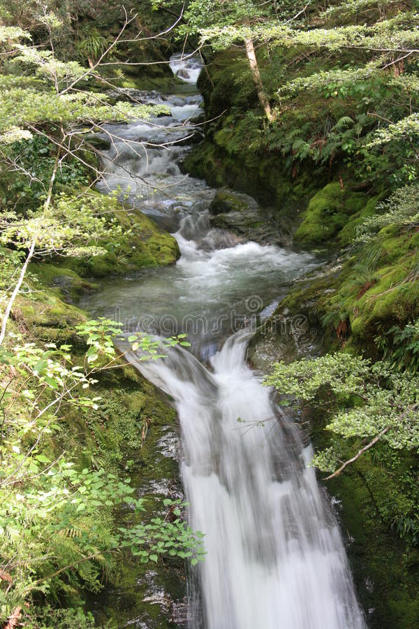 Hidden Stream stock photography