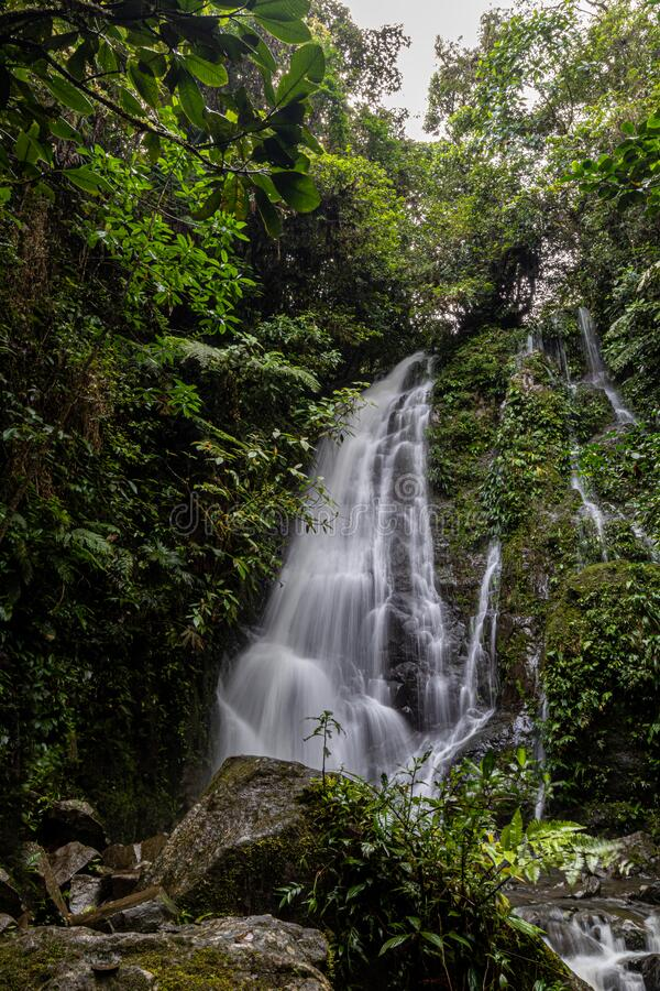 A Hidden Waterfall in the forest. Hiking to a hidden waterfall in the middle of a deep forest stock photo