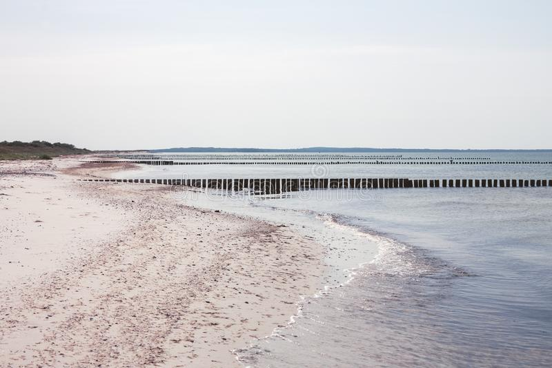 Hiddensee Island Germany, rows of groins. In the Baltic Sea royalty free stock photo