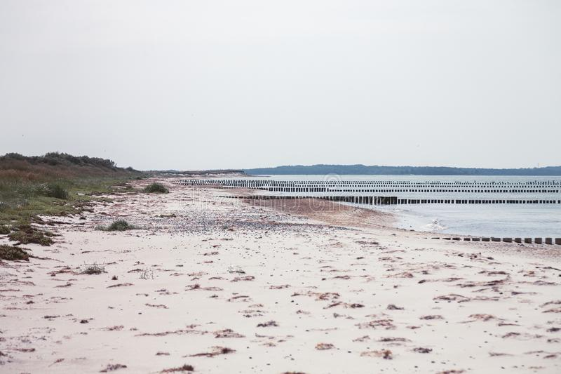 Hiddensee Island Germany, rows of groins. In the Baltic Sea stock image