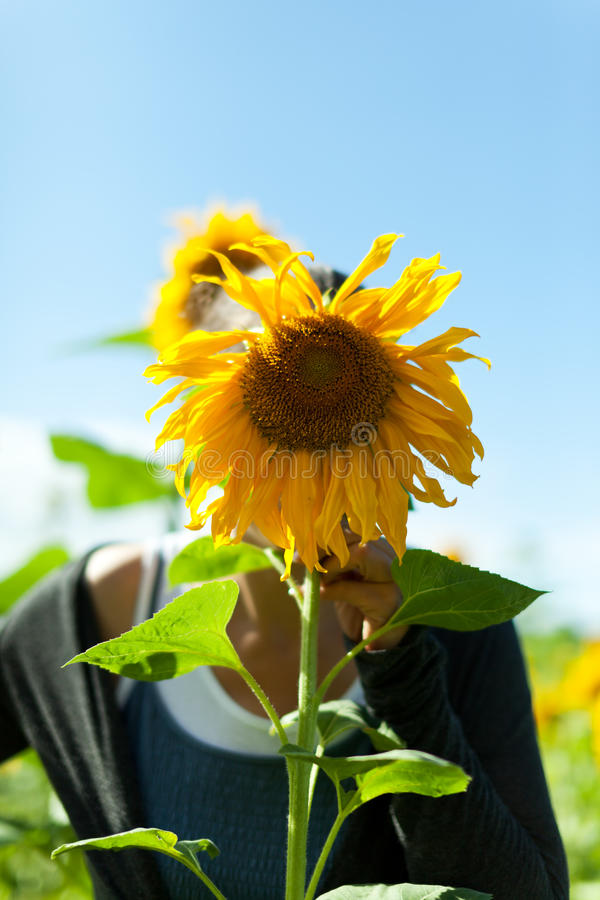 Download Hiding stock photo. Image of natural, yellow, behind - 15659440