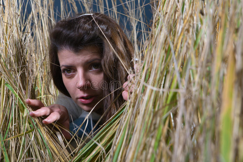 Hiding. Young woman hiding in high weed stock images