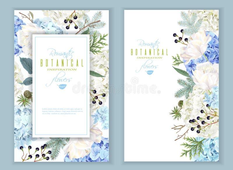 Hidrangea vinterbaner royaltyfri illustrationer