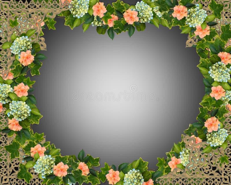 Hiedra, Hydrangea e hibisco   ilustración del vector