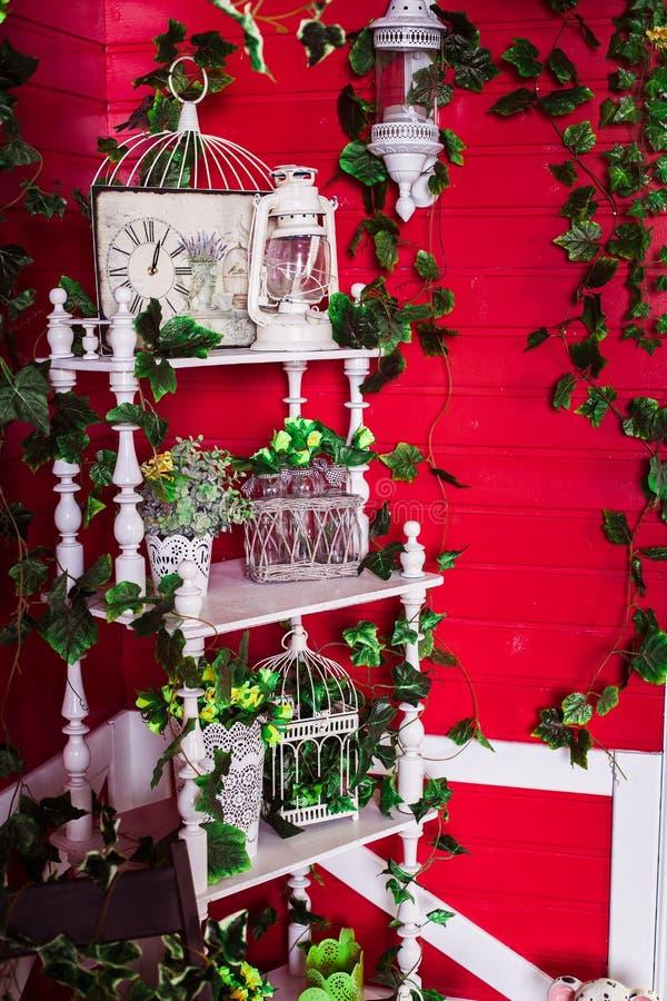 Hiedra verde entrelazada estante para libros blanco foto de archivo