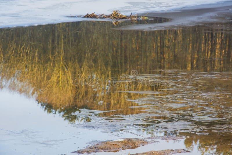 Hiele en el lago, visión desde la pista del esquí, Gorodok fotos de archivo