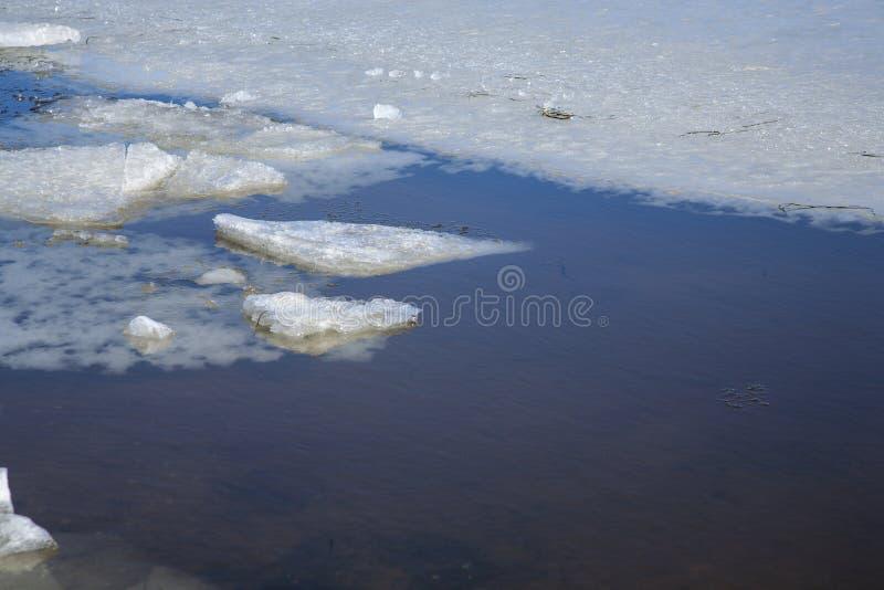 Hiele los pedazos en el océano con agua clara y helada fotografía de archivo