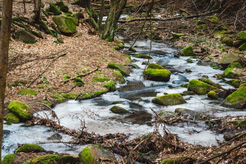 Hielo de fusión en una cala del bosque Piedras grandes cubiertas con m verde fotografía de archivo