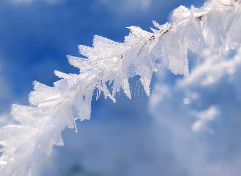 Hielo del invierno fotografía de archivo