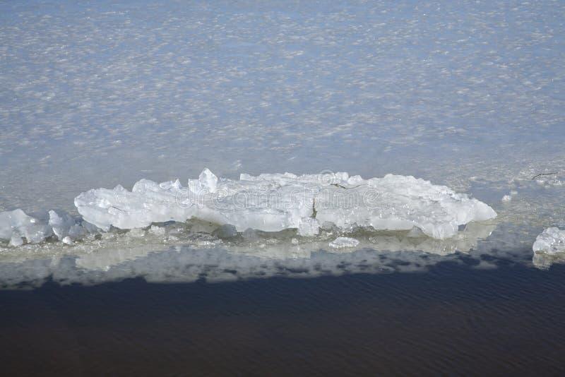 Hielo en el agua del océano en Dinamarca fotos de archivo libres de regalías