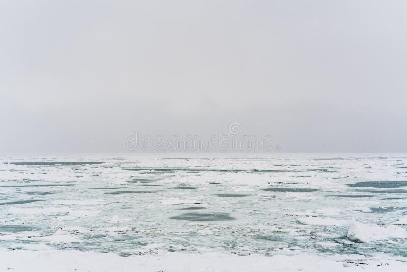 Hielo en la costa costa del Océano Pacífico imagen de archivo libre de regalías
