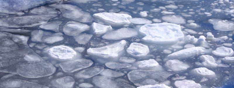 Hielo marino flotante costero que derrite como está viniendo la primavera imagen de archivo libre de regalías
