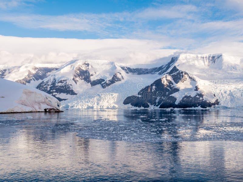 Hielo y glaciares impetuosos flotantes de Lester Cove y de Neko Harbor fotografía de archivo libre de regalías