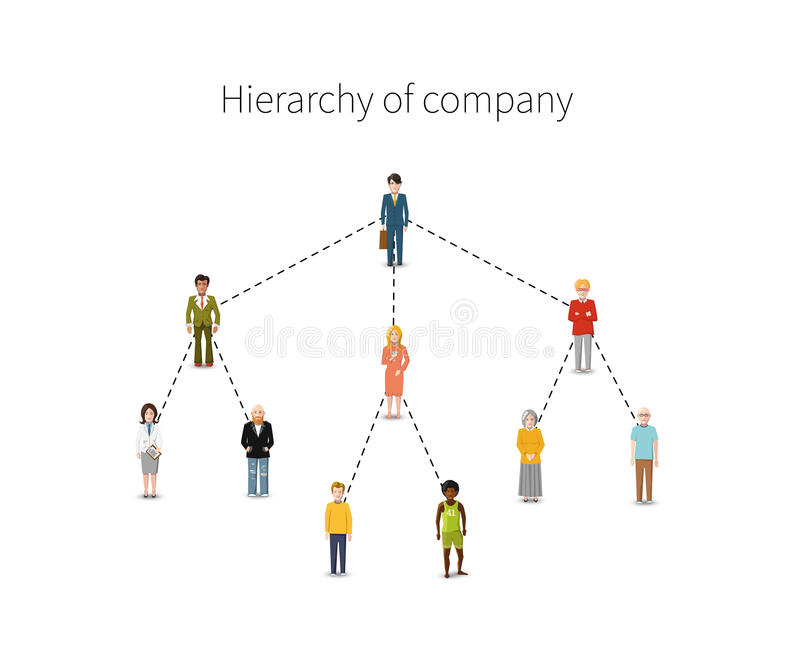 Hierarchy of company flat illustration from 10. Employees in full growth isolated on white stock illustration