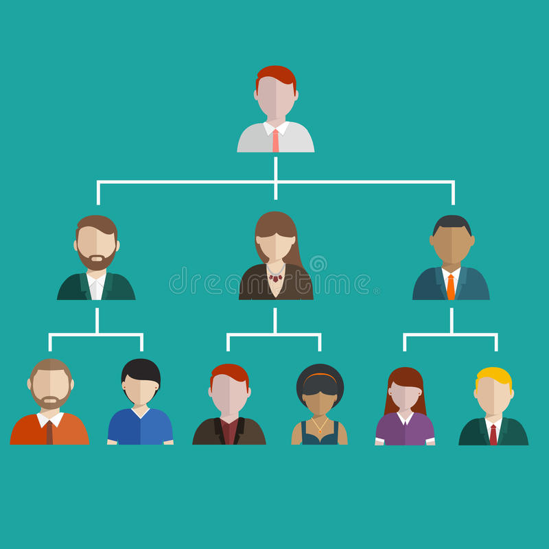 Hierarchy of company flat illustration isolated, human resource vector illustration