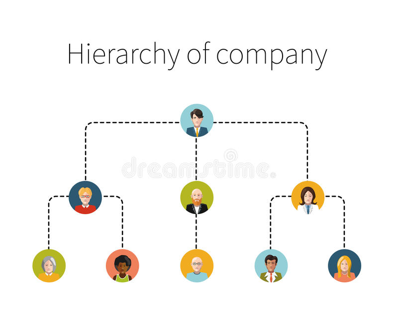 Hierarchy of company flat illustration isolated royalty free illustration