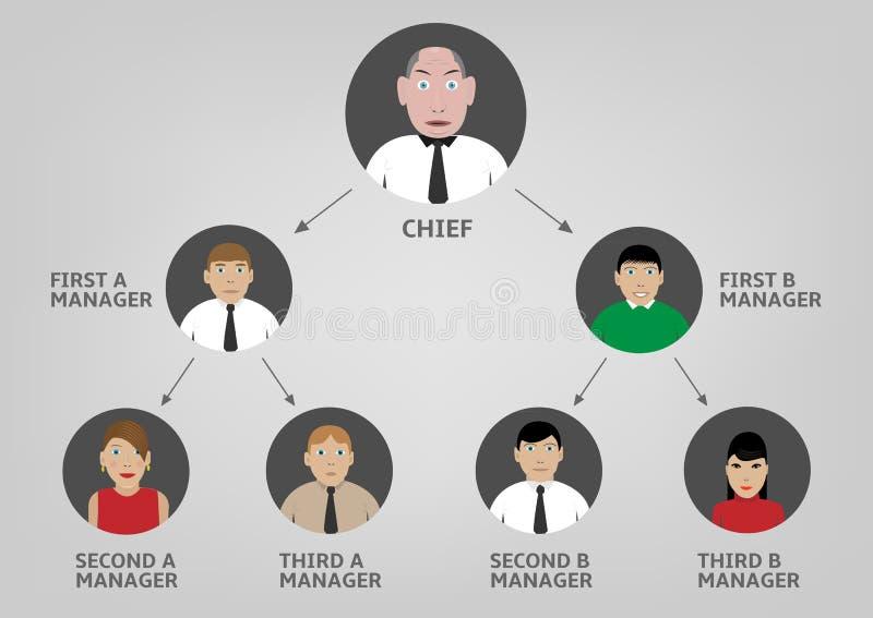 hierarki royaltyfri illustrationer