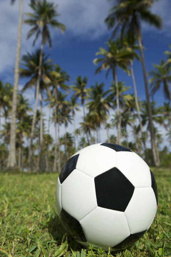 Hierba brasileña de las palmeras del balón de fútbol del fútbol imágenes de archivo libres de regalías
