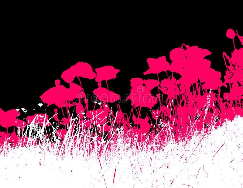Hierba con las flores rosadas de la amapola. Vector ilustración del vector