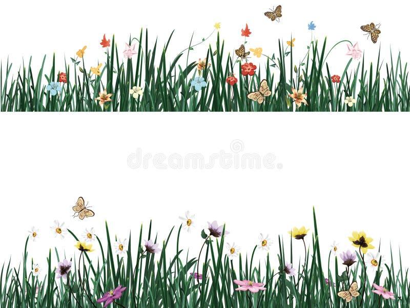 Hierba con las flores y las mariposas Ilustración del vector stock de ilustración