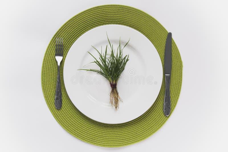 Hierba con las raíces en una placa blanca, colocada en una raíz verde con los cubiertos al lado de ellos imagenes de archivo