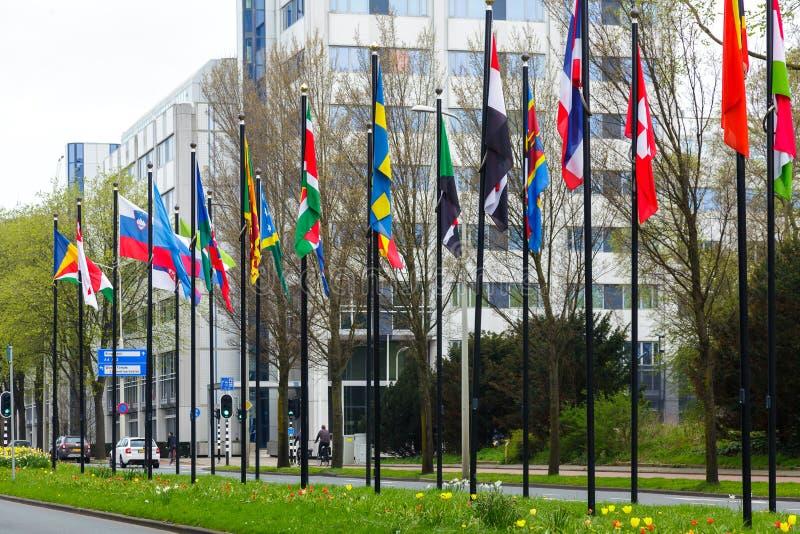 Hierba de la manera de camino de la nación de muchos diversa de las banderas de la calle de Europa de los miembros de la unión pa fotos de archivo libres de regalías
