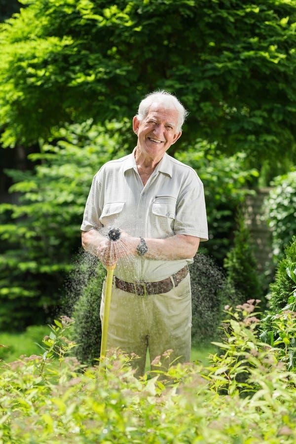 Hierba de riego con la manguera de jardín foto de archivo libre de regalías
