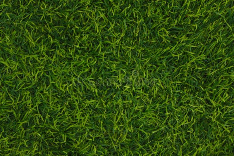 Hierba de verde artificial hermosa del césped wallpaper fotos de archivo libres de regalías