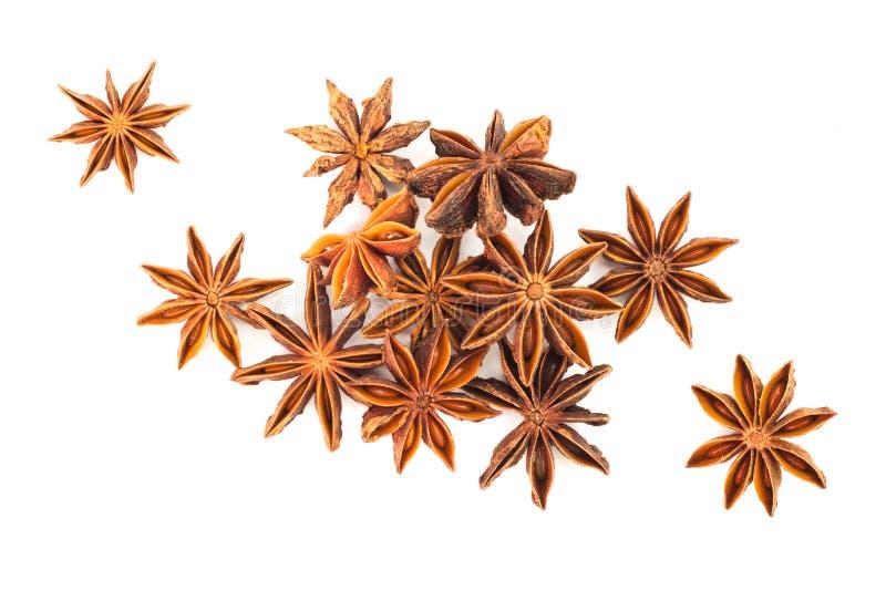 Hierba del anís de estrella imagen de archivo libre de regalías