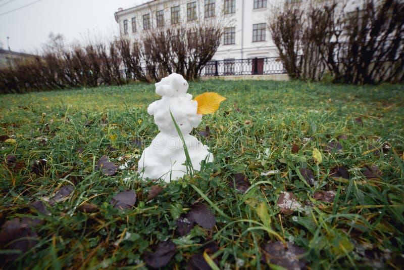 Hierba del muñeco de nieve con la hoja amarilla Imagen granangular divertida imagen de archivo