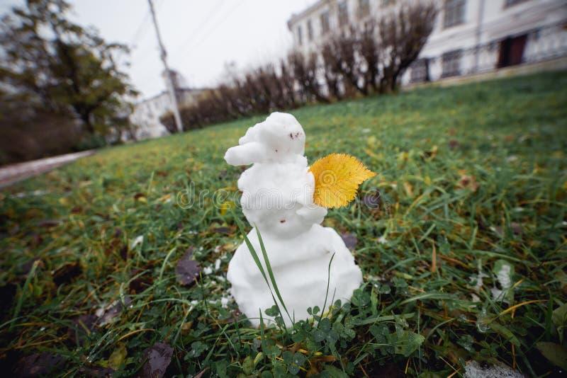 Hierba del muñeco de nieve con la hoja amarilla Imagen granangular divertida imagenes de archivo